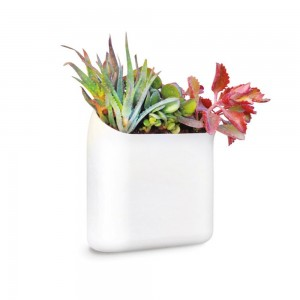 Plant Wall Hanging Unit