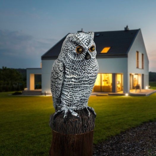 motion activated owl