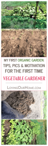 My First Organic Garden: Tips, Pics & Motivation for the First Time Vegetable Gardener