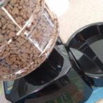 Automatic Timed Cat Feeder that Talks to Your Pets: A Must for Vacations