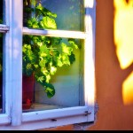 Winter Home Tips: Eliminate Drafts From Your Windows