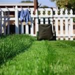 Yard Workout: Burn Calories Doing Yard Work